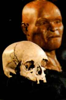 Fossíl Humano